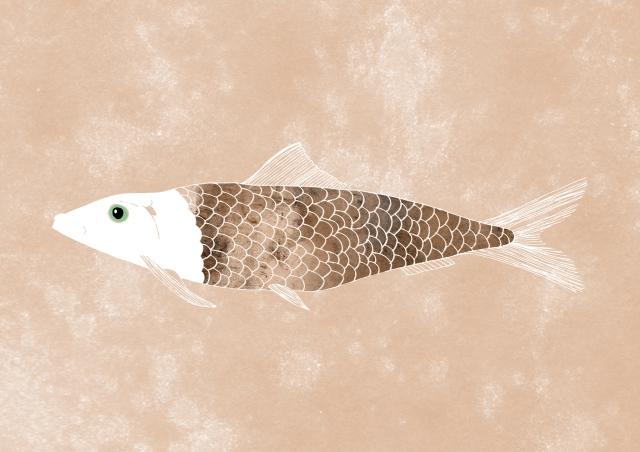 Fisken Annan färg